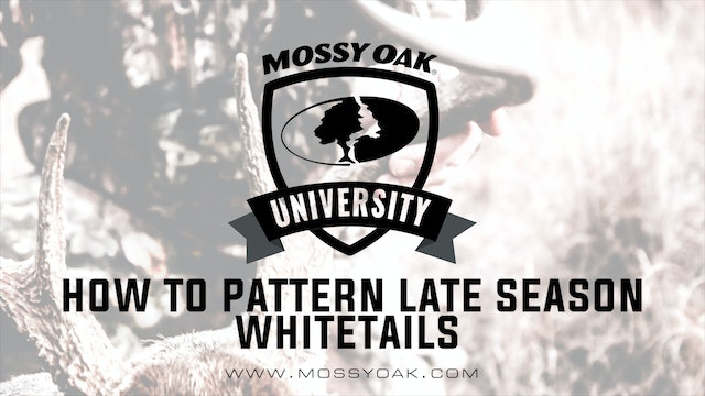 How to Pattern Late Season Whitetails