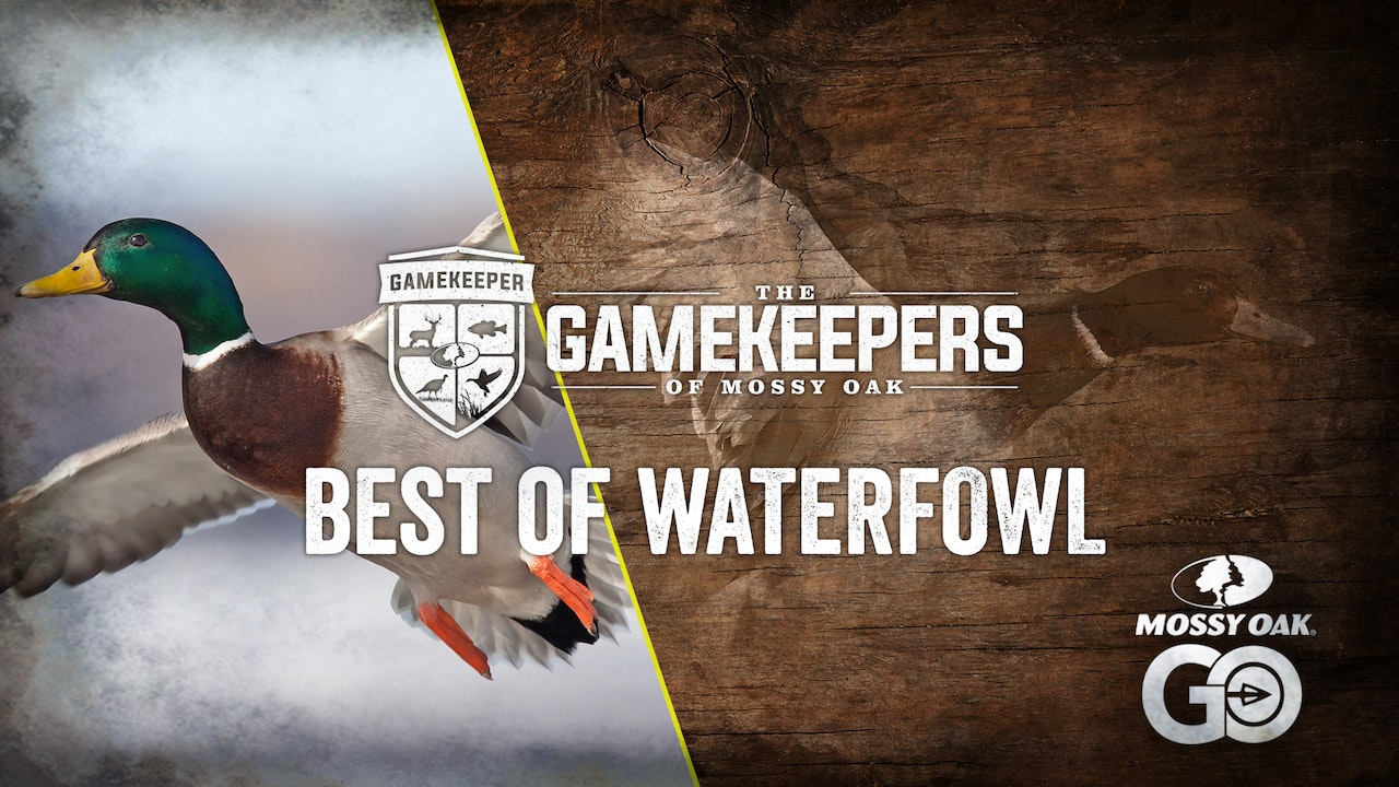 Gamekeepers of Mossy Oak • Best of Waterfowl