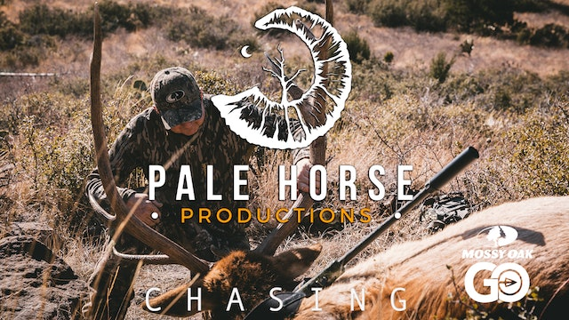 Chasing • Pale Horse