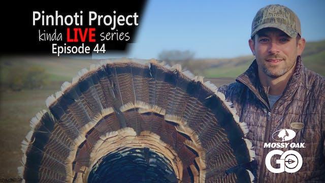 Kinda Live • Episode 44 • Pinhoti Pro...