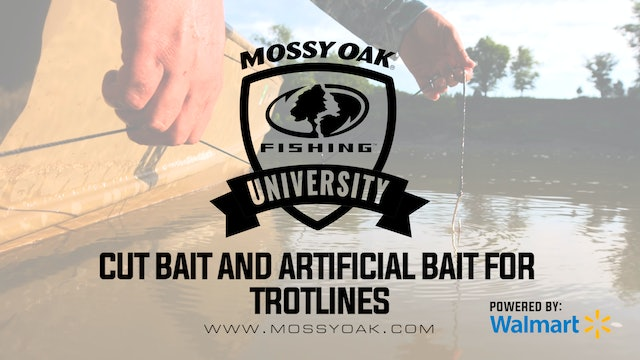 Best Cutbait and Artificial Bait To Use On A Trotline • Mossy Oak University