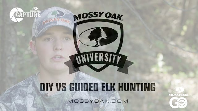 DIY vs Guided Elk Hunting • Mossy Oak...