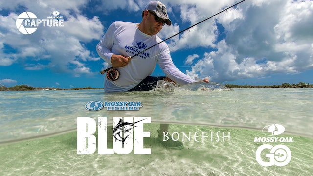 Bonefish • BLUE • Episode 1