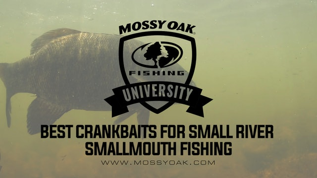 Crankbaits For Small River Smallmouth Bass