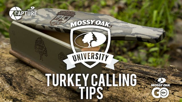 Turkey Calling Tips