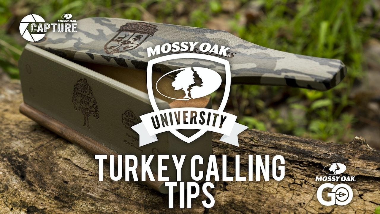 Turkey Calling Tips