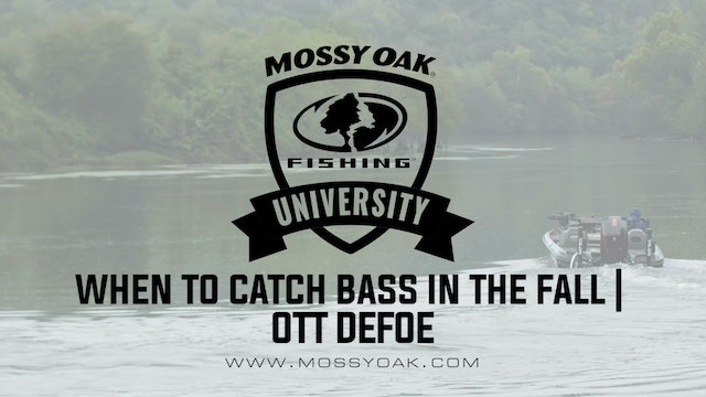 When to Catch Bass in the Fall - Ott DeFoe Fishing Tips