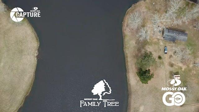 Davis Family Tree