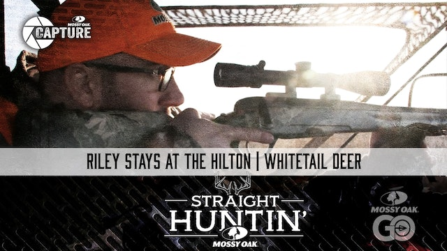Riley Stays at the HIlton • Straight Huntin'