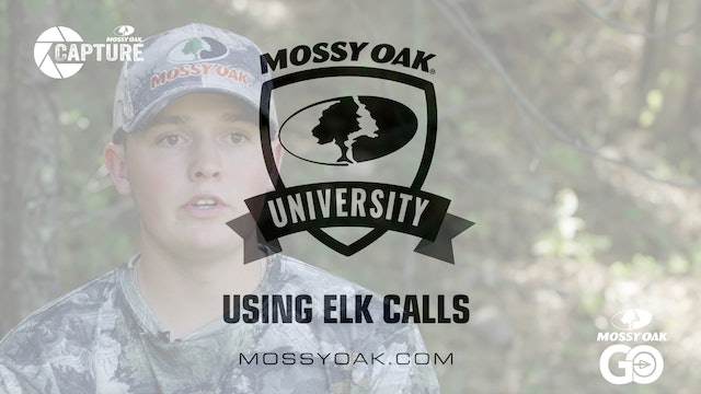 Using Elk Calls  • Mossy Oak Univeristy