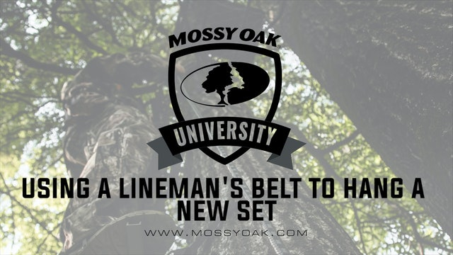 Using a Lineman's Belt When Hanging Hanging a New Set
