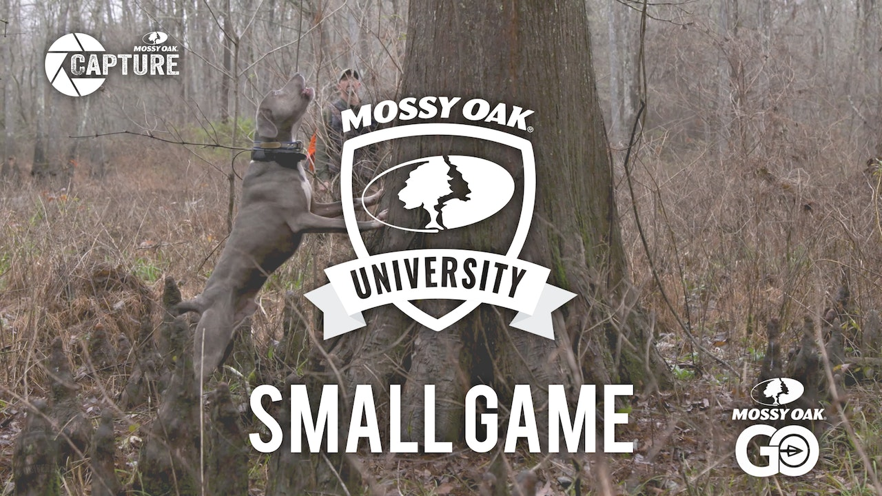 Small Game • Mossy Oak University