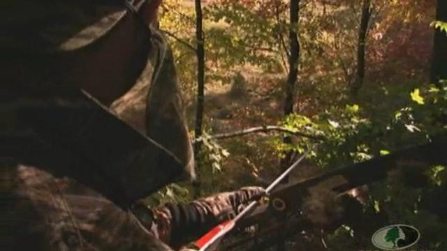 Pennsylvania Bowhunting