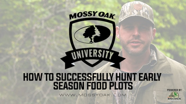 How To Be Successful Hunting Early Season Food Plots