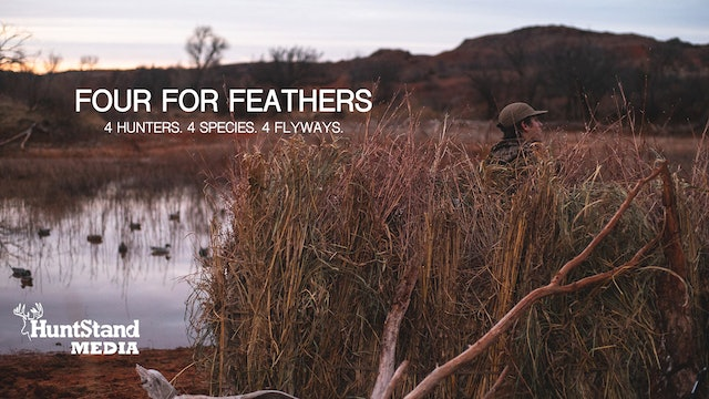 Four For Feathers