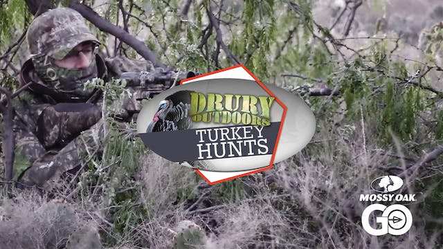 Texas Turkey Suffers Some Serious Win...