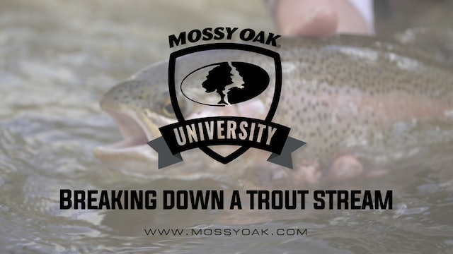 Breaking Down a Trout Stream • Mossy Oak University