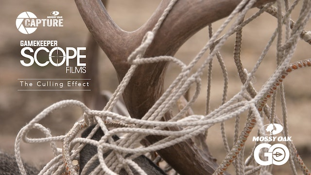 The Culling Effect • Gamekeeper Scope Films