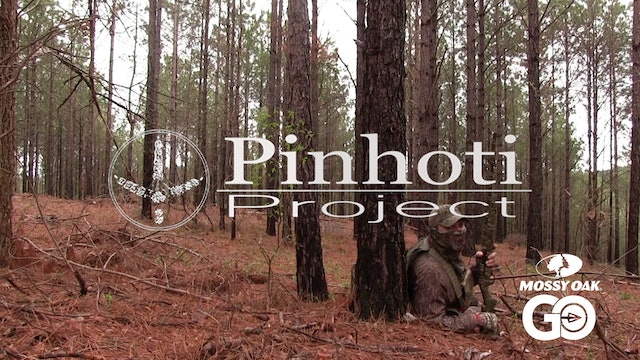 Turkey Hunting • The Slow Days • Pinhoti Project Day 22.23.24