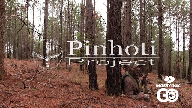 Turkey Hunting • The Slow Days • Pinh...