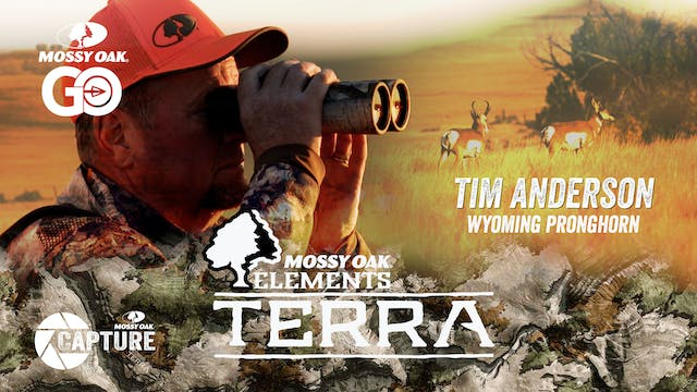 Tim Anderson Wyoming Pronghorn • Terra