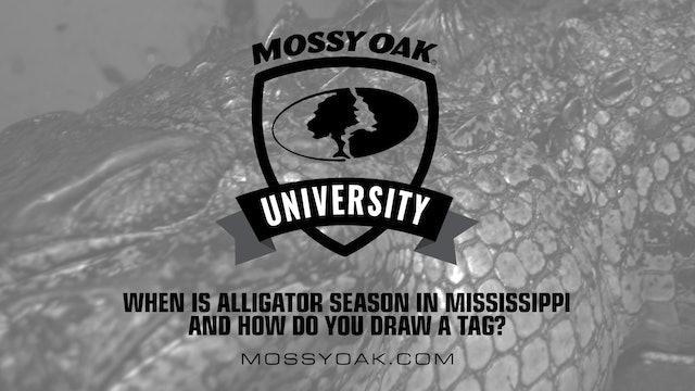 When is Alligator Season in MS • Mossy Oak University
