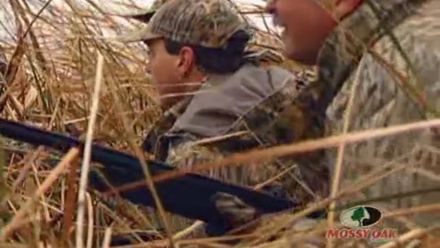 Delta Waterfowl Fascination • Studyin...