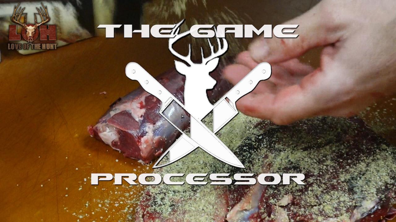 The Game Processor