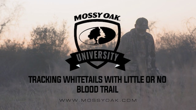 Tracking Whitetails with Little or No Blood Trail