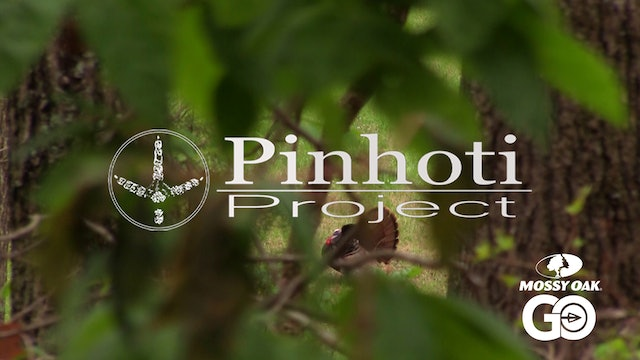Rainy Day Turkey Hunt • Pinhoti Project Day 19