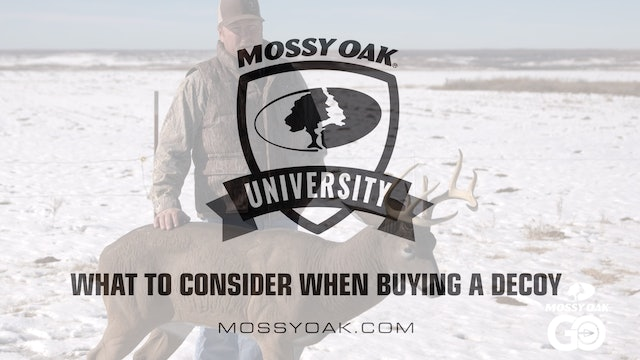 What to Consider When Buying a Decoy • Mossy Oak University