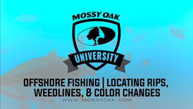 Offshore Fishing • Locating and Fishi...