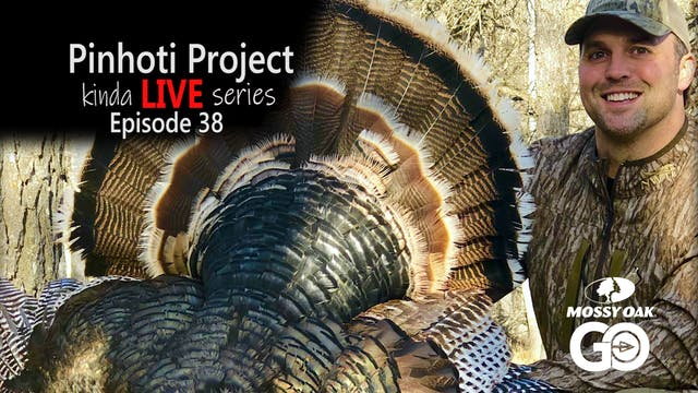 Kinda Live • Episode 38 • Pinhoti Pro...