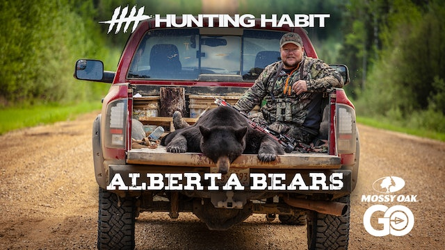 Hunting Habit · Alberta Bears