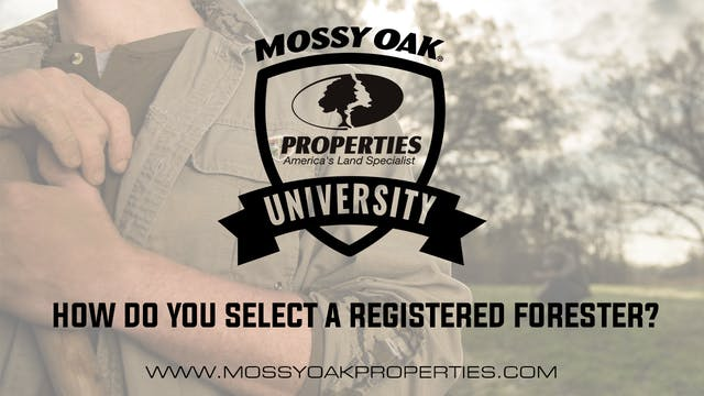 How Do You Select A Registered Forester?