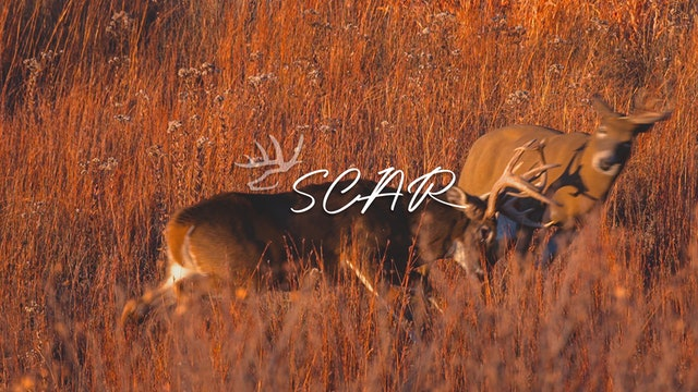 Scar • Heartland Bowhunter • Behind the Draw