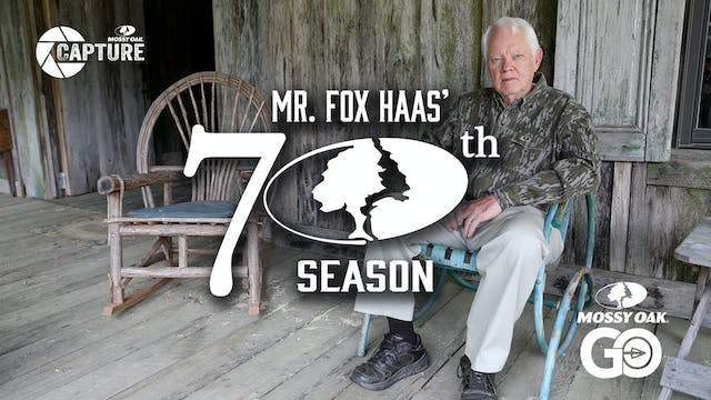 Mr. Fox Haas • 70th Season • Short Film
