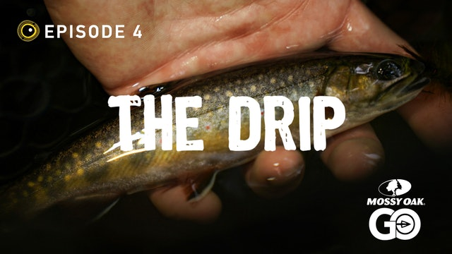 Episode 4 • The Drip