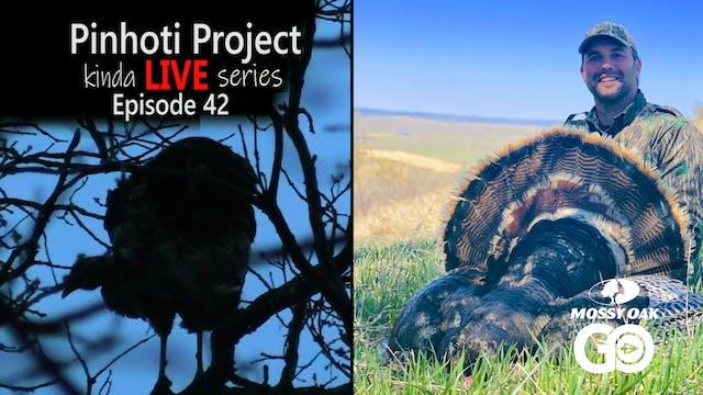 Kinda Live • Episode 42 • Pinhoti Pro...
