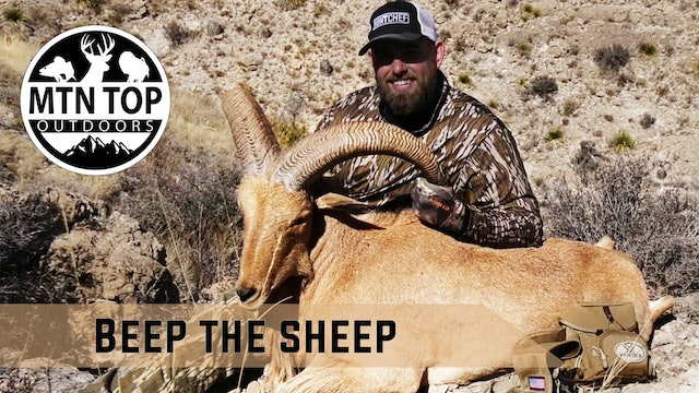 Beep the Sheep • MTN.Top Outdoors