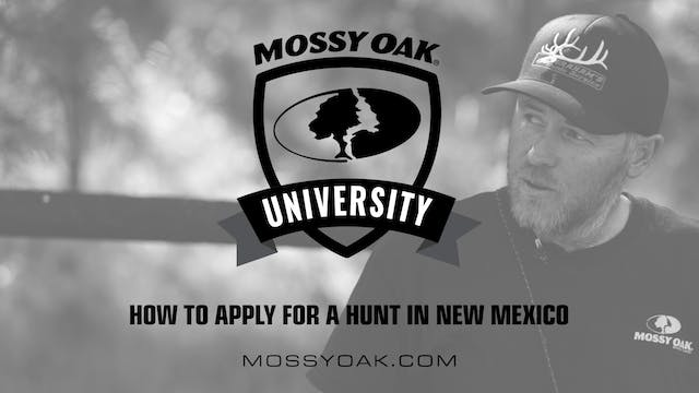 How to Apply in New Mexico