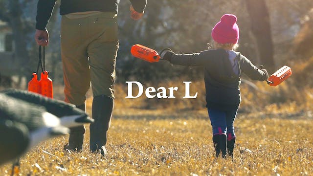 Dear L • A Labrador Inspired Film