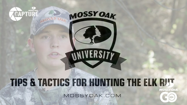 Tips and Tactics for Hunting the Elk Rut  • Mossy Oak Univeristy