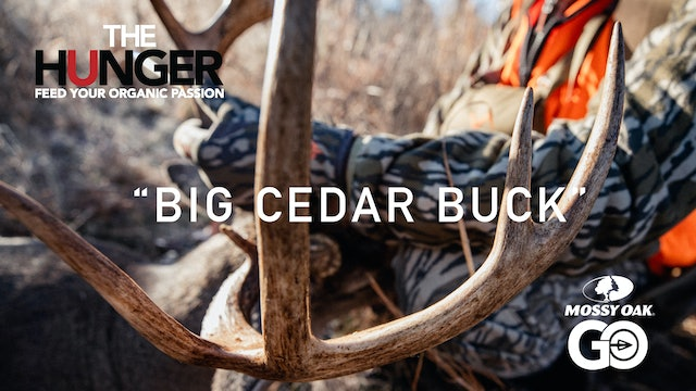 Big Cedar Buck • The Hunger