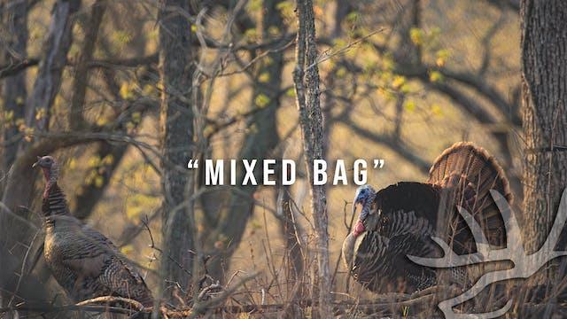 Full Strut • Episode 10 • Mixed Bag