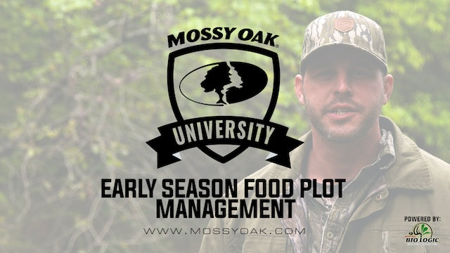 Early Season Food Plot MGMT - Taking Inventory and Boosting Growth