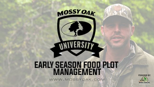 Early Season Food Plot MGMT - Taking ...