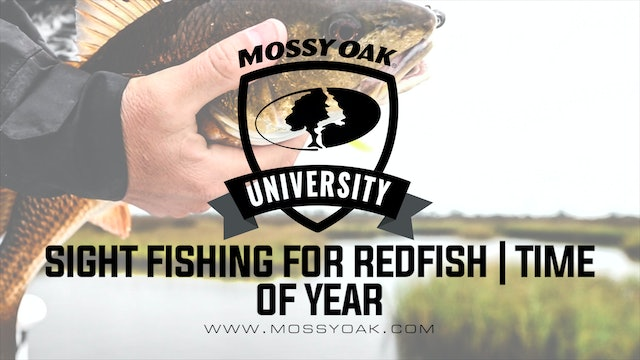 Best Time Of Year For Targeting Redfish | Inshore Fishing