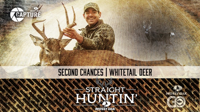 Second Chances • Whitetail Deer • Straight Huntin'