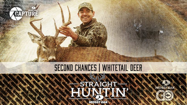 Second Chances • Whitetail Deer • Str...